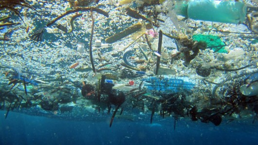 "A ""raft"" of garbage floats at the ocean's surface. (Gordon Ober/OceanBites.org)"