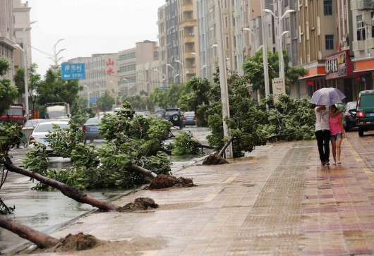 Trees torn down by strong wind collapse on the road in Jinjiang, east China's Fujian province on August 8, 2015 as typhoon Soudelor draws near the mainland of China. Typhoon Soudelor battered Taiwan with fierce winds and rain, leaving four people dead and a trail of debris in its wake as it takes aim at mainland China.  CHINA OUT   AFP PHOTO        (Photo credit should read STR/AFP/Getty Images)