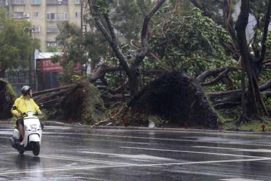 Najsilniejszy w tym roku tajfun Soudelor zabił 8 osób w Chinach i 6 w Tajwanie -9