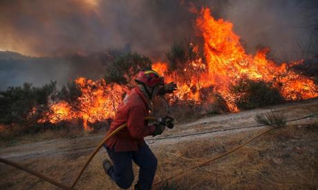 Portugalia - Spłonęło już 215 tysięcy hektarów lasów, zginęło 16 osób -1