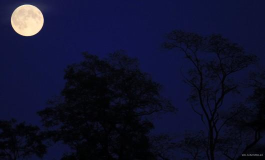 Superksiężyc -4