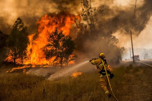 USA - W całej Kalifornii występuje aktualnie 20 pożarów -6