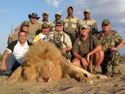 Alldays, Republika Południowej Afryki - Trzynastu bogatych turystów z Europy pojechało zrobić rzeź dzikich zwierząt dla przyjemności