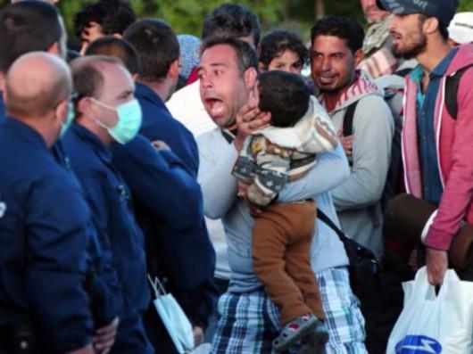 Cała prawda o uchodźcach z Syrii