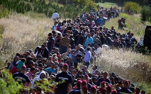 Chorwacja - Rekordowo dużo uchodźców na granicy -1