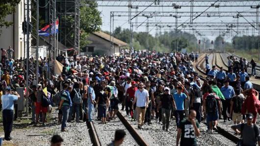 Chorwacja - Rekordowo dużo uchodźców na granicy -2