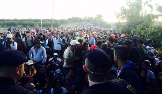 Chorwacja - Rekordowo dużo uchodźców na granicy -3