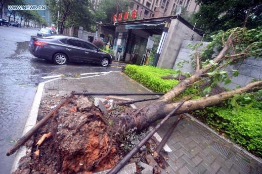Tajwan - Ponad 1.2 mln osób bez prądu przez tajfun Dujuan -5