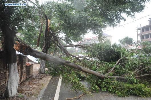 Tajwan - Ponad 1.2 mln osób bez prądu przez tajfun Dujuan -8