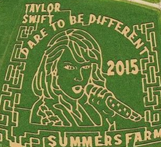 USA - Farmer z Maryland wyciął w zbożu portret Taylor Swift