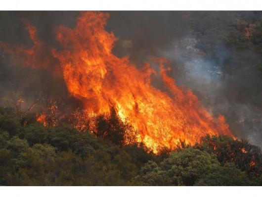 USA - Trzy potężne pożary w Kalifornii, palą się 54 tysiące hektarów, spłonęło 81 domów -6