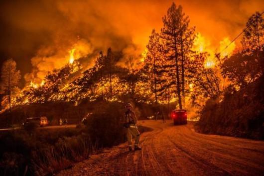 USA - Trzy potężne pożary w Kalifornii, palą się 54 tysiące hektarów, spłonęło 81 domów -7