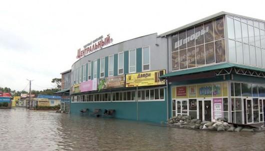 Ussurijsk, Rosja - Potężna nawałnica zalała miasto i zwierzęta w zoo -3