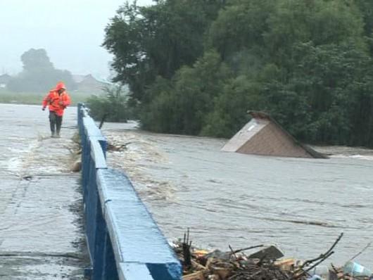 Ussurijsk, Rosja - Potężna nawałnica zalała miasto i zwierzęta w zoo -8