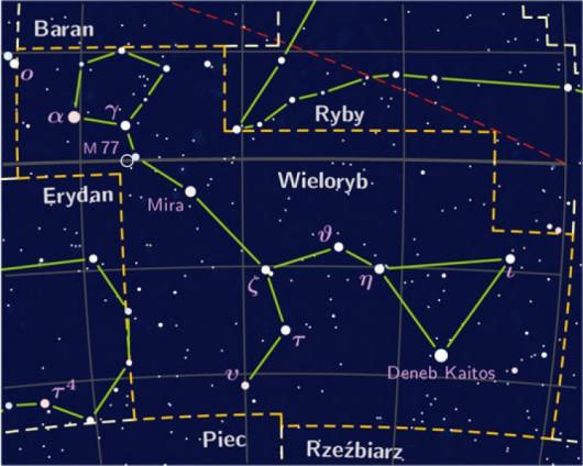 Gwiazdozbiór Wieloryba (wikimedia.commons/Karol007 CC BY-SA 3.0)