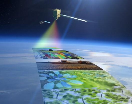 FLEX_satelita