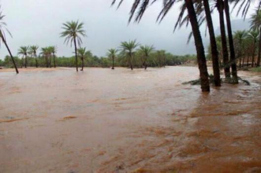 Jemen - Cyklon Chapala przyniósł tyle opadów deszczu, ile normalnie pada w ciągu 10 lat -16