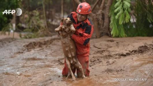 Prowincja Artvin, Turcja - Ulewny deszcze spowodował powódź i osuwiska ziemi -3