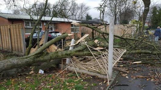 Szwecja - Wiatr uszkodził linie energetyczne 2