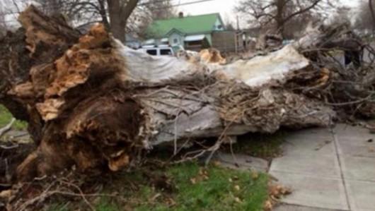 USA - Bardzo silna burza nad stanem Waszyngton -18
