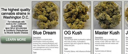 medyczna_marijuana3