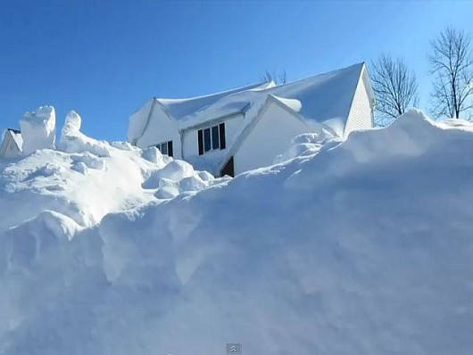 Buffalo brak śniegu.4JPG