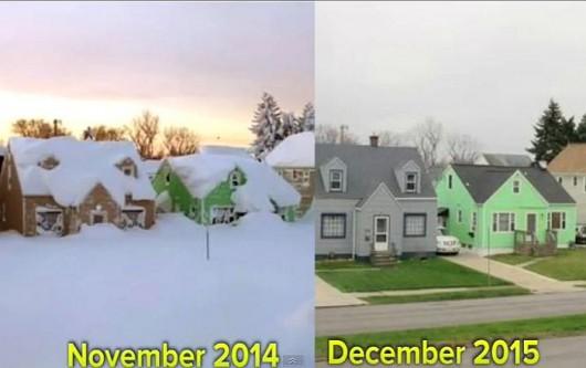 Buffalo brak śniegu.7JPG