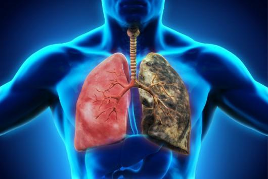 Negatywny wpływ e-papierosów na zdrowie palaczy potwierdzają liczne badania (Zdjęcie płuc Shutterstock)