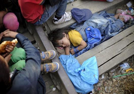 Dzieci - imigranci