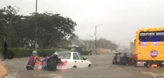 Guayaquil , Ekwador - Samochody i rekiny pływały ulicami -1