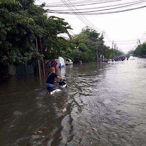 Guayaquil , Ekwador - Samochody i rekiny pływały ulicami -2