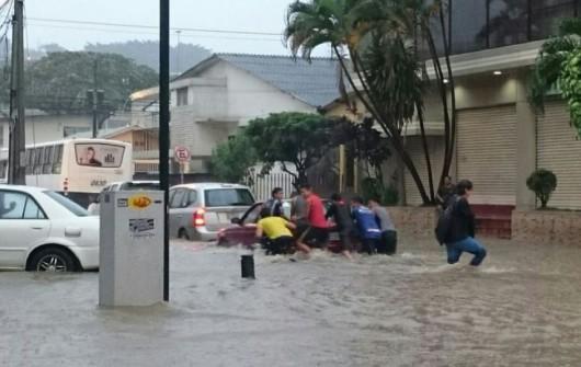 Guayaquil , Ekwador - Samochody i rekiny pływały ulicami -3