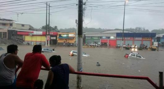 Guayaquil , Ekwador - Samochody i rekiny pływały ulicami -4