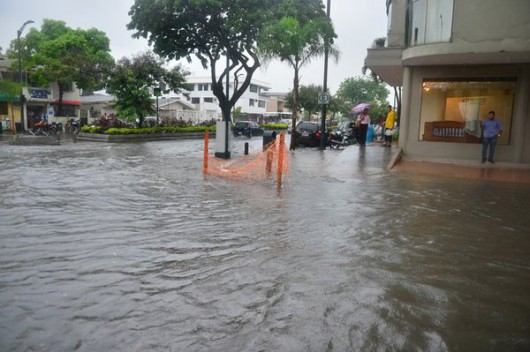 Guayaquil , Ekwador - Samochody i rekiny pływały ulicami -5