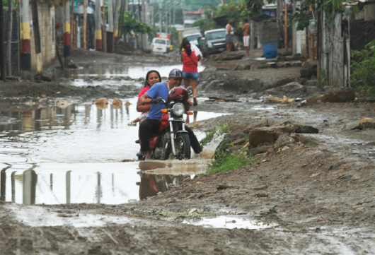 Guayaquil , Ekwador - Samochody i rekiny pływały ulicami -6