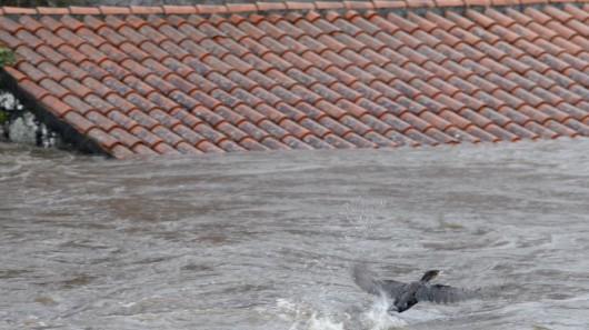 Hiszpania - Obfite opady deszczu w Galicji -5