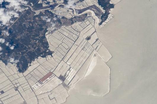Hodowle ryb na wybrzeżu chińskiej prowincji Liaoning
