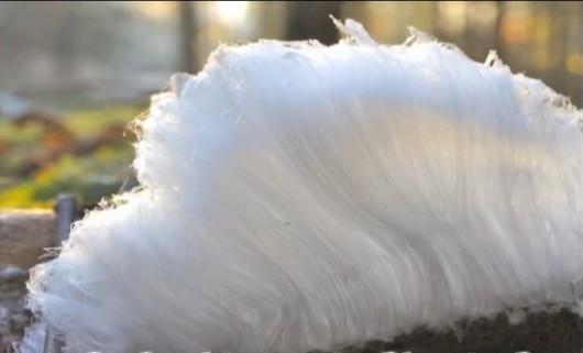 Zachwycająca formacja - lodowe włosy Foto YT