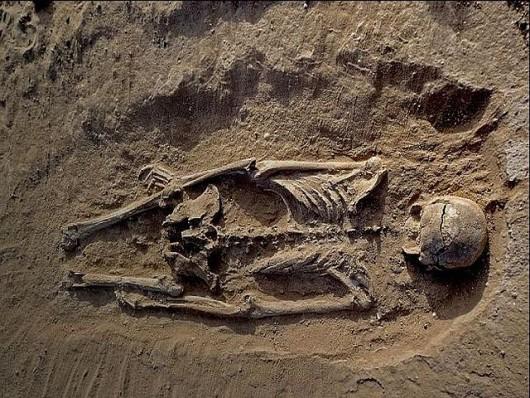 Ofiary masakry sprzed 10 000 lat Foto: YT