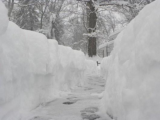 USA - Z powodu śnieżycy ogłoszono stan wyjątkowy w 11 stanach -6