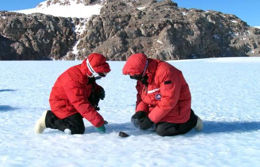Antarktyda - Pod powierzchnią lodu prawdopodobnie znajduje się warstwa żelaznych meteorytów -1
