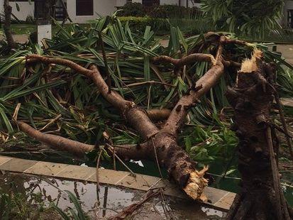 Fidżi - Jeden z najpotężniejszych cyklonów na półkuli południowej zabił co najmniej 5 osób -6