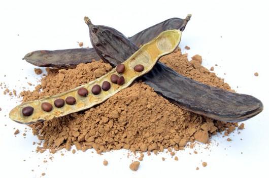Karob - nasiona po zmieleniu mogą być alternatywą dla kakaa