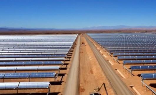 Największa na świecie elektrownia słoneczna na Saharze Foto: YT
