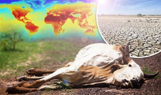 Globalne ocieplenie -3