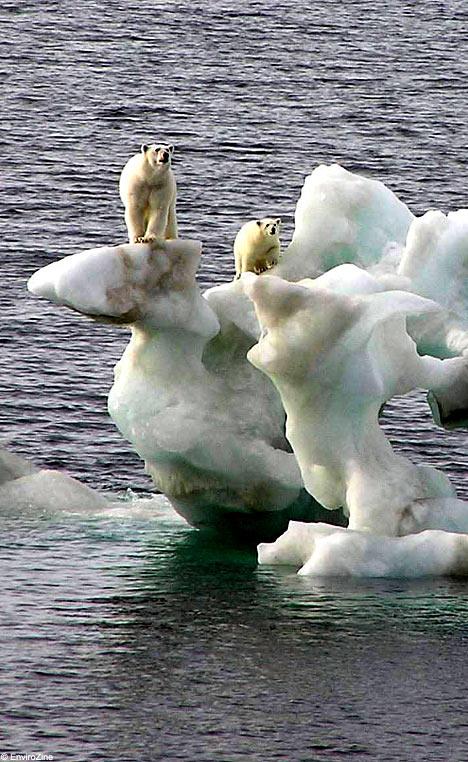 Globalne ocieplenie -5