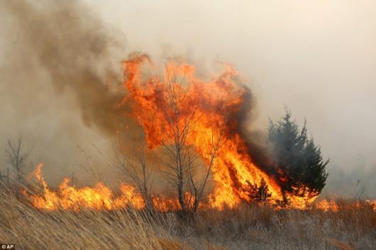 Kansas, USA - Pożar na powierzchni ponad 150 tysięcy hektarów -1