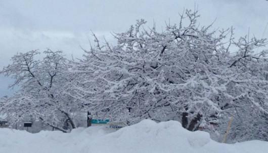 Meksyk - Na południu wichury, na północy śnieżyce -4