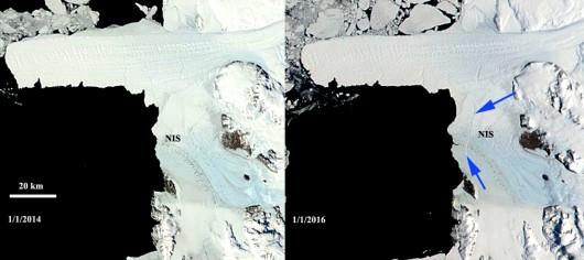 Antarktyda - Dwie góry lodowe oderwały się od lodowca szelfowego Nansena -3