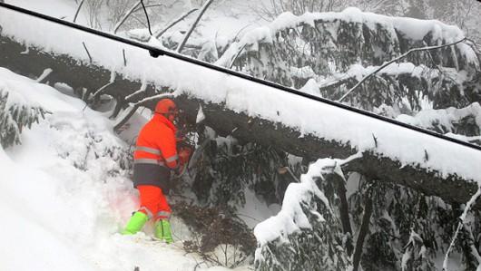Austria - Ogromne straty w rolnictwie z powodu mrozów i obfitych opadów śniegu -1